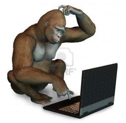 Gorilla with computer