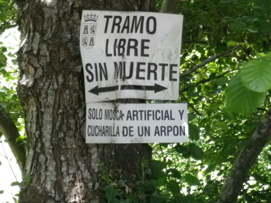 "I thought the sign said ""Walk without dying."" What it says is that the stream is ""catch and release."" Don't kill the fish. OK, so my Spanish still isn't that good."